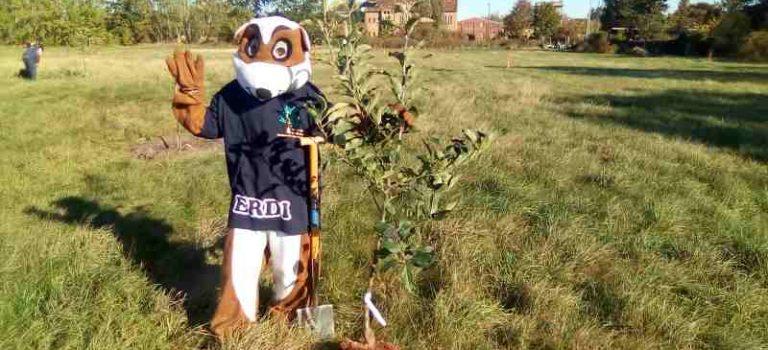 10.000 Bäume für die Lausitz – Erster Baum gepflanzt